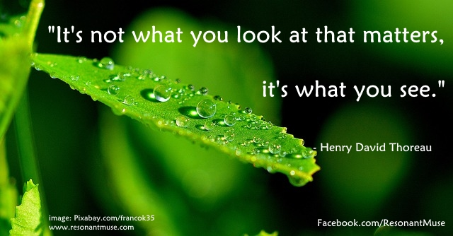 Henry David Thoreau - It's Not What You Look At, It's What You See